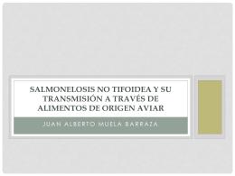 Salmonelosis no tifoidea y su transmisión a través de alimentos de