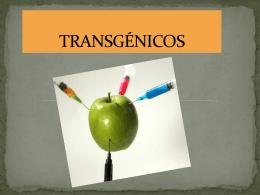 TRANSGÉNICOS - CMCFJBURGOS