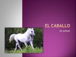 EL CABALLO - WordPress.com