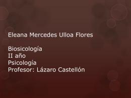 Eleana Mercedes Ulloa Flores Biosicología II año Psicología