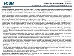Cv Nelson A. Fernández G - CBM Ingeniería Exploración y