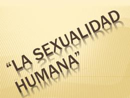Diapositiva 1 - trabajosticII263