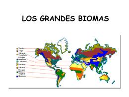 los grandes biomas zonas climáticas