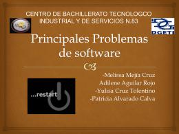 Principales Problemas de software (598812)