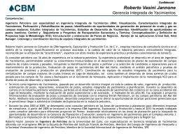 CV Roberto Vasini_2012