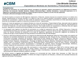 CV Lino Briceño