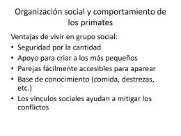 Organización social y comportamiento de los primates