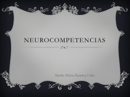 Neurocompetencias