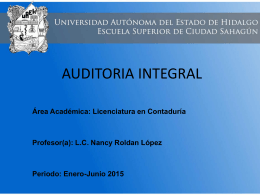 fase_previa_de_auditoria (Tamaño: 219.17K)