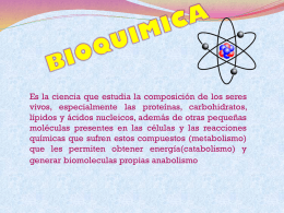 BIOQUIMICA made.