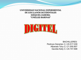 digitel - infosis
