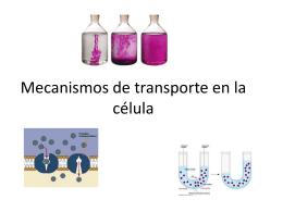Mecanismos de transporte en la célula