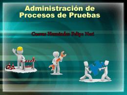 Administración de Procesos de Pruebas