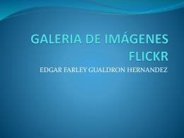 GALERIA DE IMÁGENES FLICKR
