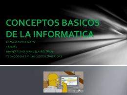 CONCEPTOS BASICOS DE LA INFORMATICA
