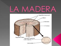 LA MADERA - TEKNOLANAK