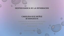 GESTION BASICA DE LA INFORMACION CAROLINA RUIZ MUÑOZ