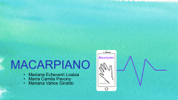 MACARPIANO (3308165)