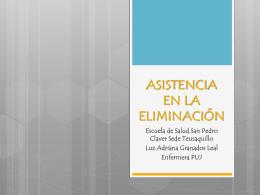 AsistenciaEliminación_PP