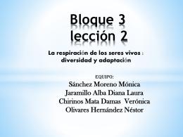 Bloque 3 - est116