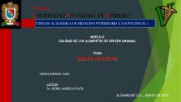 EDEMA MALIGNO (2503983)