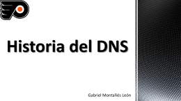 Historia del DNS. - Servicios de Red e Internet