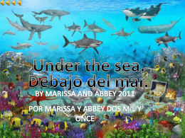Under the sea. - SBAS