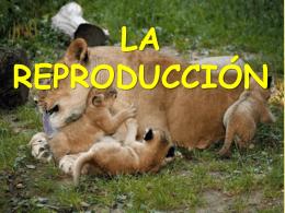 LA REPRODUCCION-TEMA 3