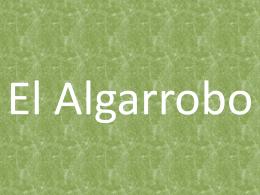El Algarrobo - club de ecoguardianes
