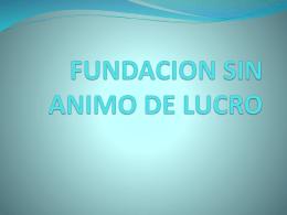 FUNDACION SIN ANIMO DE LUCRO