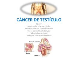 CÁNCER DE TESTÍCULO - Carpe Diem – Cogito ergo sum
