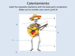 Calentamiento Label the esqueleto (skeleton) with the body parts
