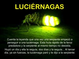 Luciérnagas - José Francisco Pedronni Luna -