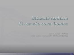 Músculo cardiaco El corazón como bomba