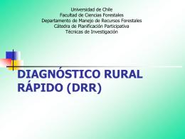DIAGNÓSTICO RURAL RÁPIDO (DRR)