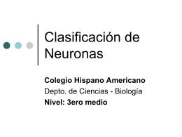 Clasificación de Neuronas