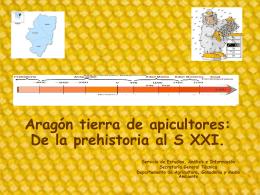 Aragón tierra de apicultores: De la prehistoria al