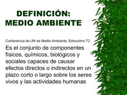 DEFINICIÓN: MEDIO AMBIENTE
