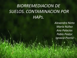 4. TÉCNICAS DE BIORREMEDIACIÓN