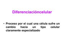 Diferenciacióncelular - Biología Celular y
