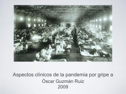 Aspectos clínicos de la pandemia por gripe a