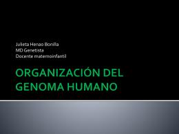ORGANIZACIÓN DEL GENOMA HUMANO