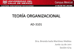TEORÍA ORGANIZACIONAL AD-3101
