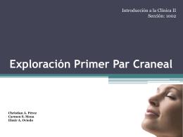 Exploración Primer Par Craneal