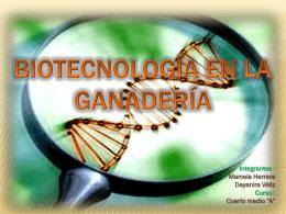 Biotecnología en la ganaderia