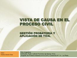 VISTA DE CAUSA EN EL PROCESO CIVIL GESTIÓN