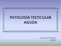 PATOLOGÍA TESTICULAR AGUDA