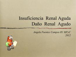 Insuficiencia Renal Aguda Daño Renal Agudo