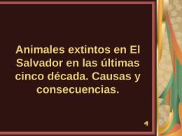 FUNDACIÓN SALVADOREÑA PARA LA PROTECCIÓN Y