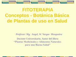 FITOTERAPIA Conceptos - Botánica Básica de Plantas